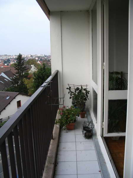 Tenoch cactus - Amenager petit balcon appartement ...